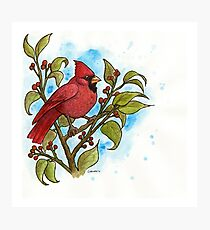 Northern Cardinal Watercolor Photographic Print