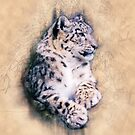 Snow Leopard by Janice O'Connor