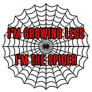 Spidersong by rolypolynicoley