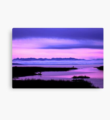 olympic mountains over north puget sound - pink Canvas Print