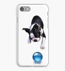 Bully ....The Boston Terrier iPhone Case/Skin