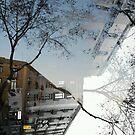 Comparisons angled onto contrasting viewpoints. 09 by Juan Antonio Zamarripa [Esqueda]