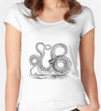 Vintage Boa Constrictor Snake Skeleton Illustration Retro 1800s Black and White Snakes  Women's Fitted Scoop T-Shirt
