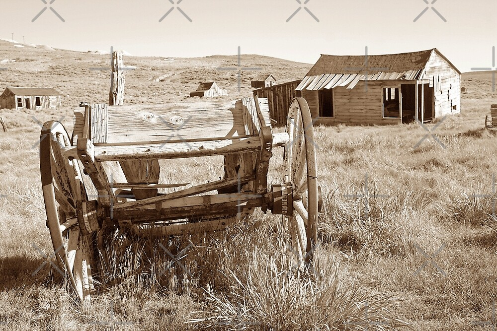 Old Wagon in Bodie Ghost Town by CarolM