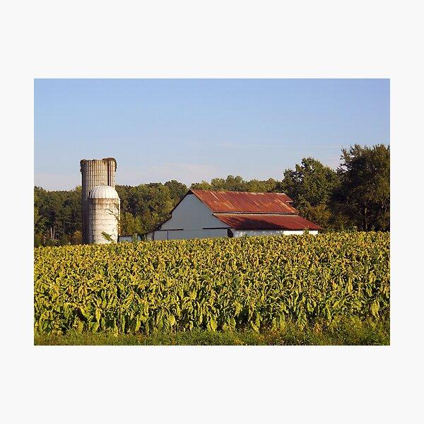 Old Farm v3 (basic edits) Photographic Print