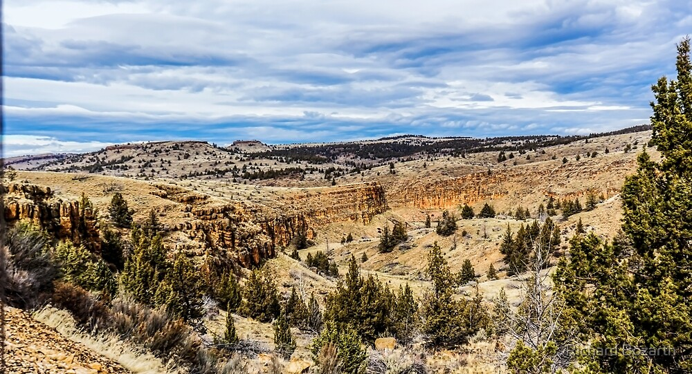 Oregon Outback by Richard Bozarth