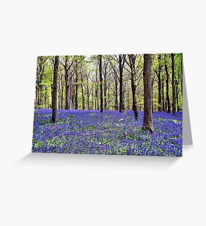 Knee Deep In Bluebells! Greeting Card