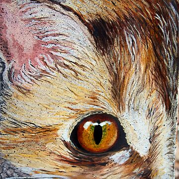 Visions of a Cat by artbylorraine