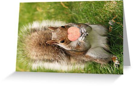 kiss me squirrel by MegStewart