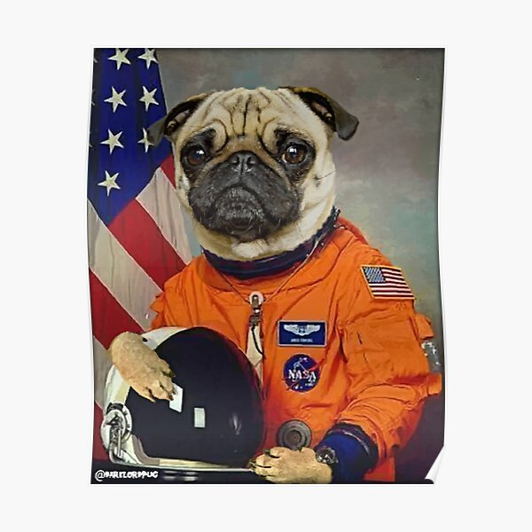 Astropug Poster