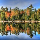 Autumn Reflections of Maine by Shelley Neff