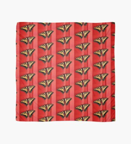 tiger swallowtail butterfly on unusual background Scarf