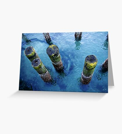 lichen pilings Greeting Card