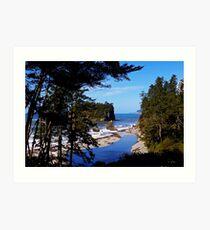 ruby beach, washington, usa landscape Art Print
