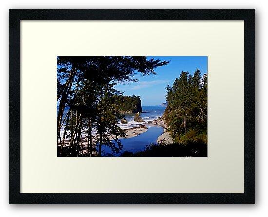 ruby beach, washington, usa landscape by dedmanshootn
