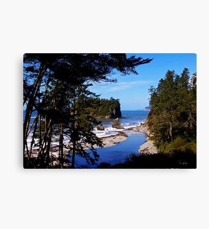 ruby beach, washington, usa landscape Canvas Print