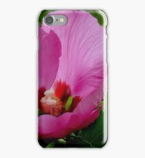 Rosemallow iPhone Case/Skin