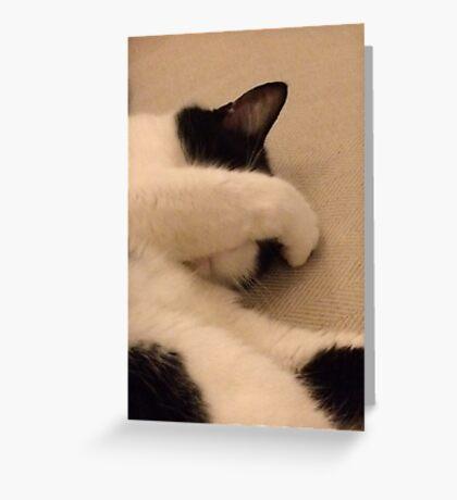 It wasn't me!  Greeting Card