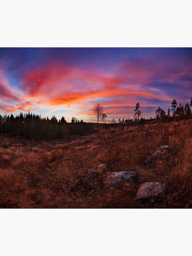 Beautiful vibrant sunset clouds landscape by Juhku