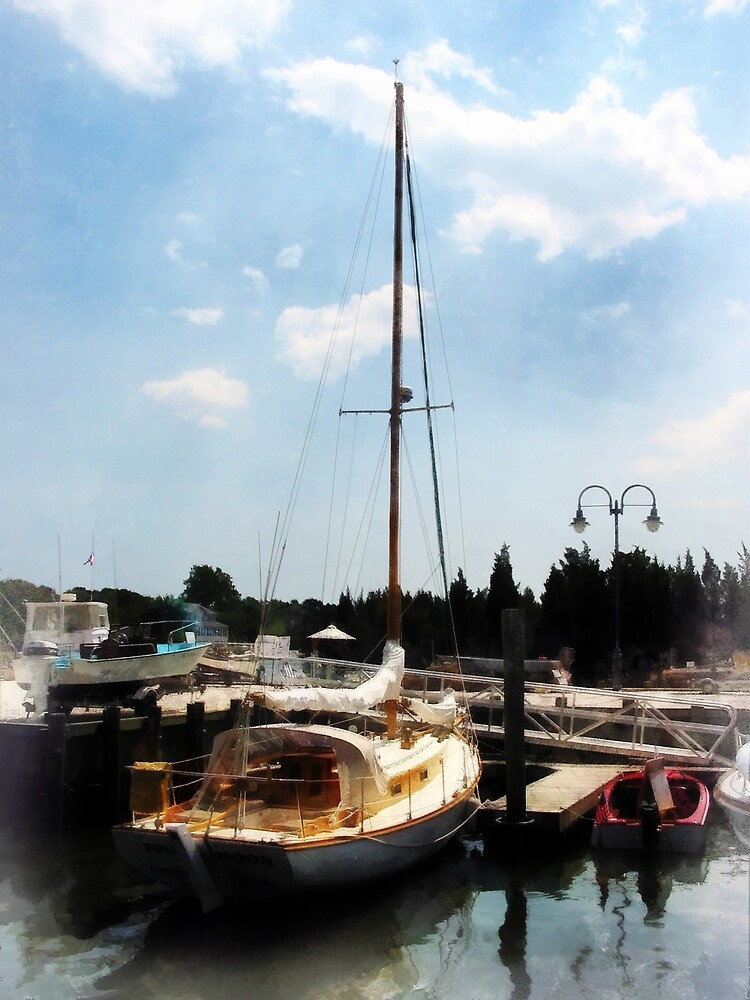 Docked Cabin Cruiser by Susan Savad