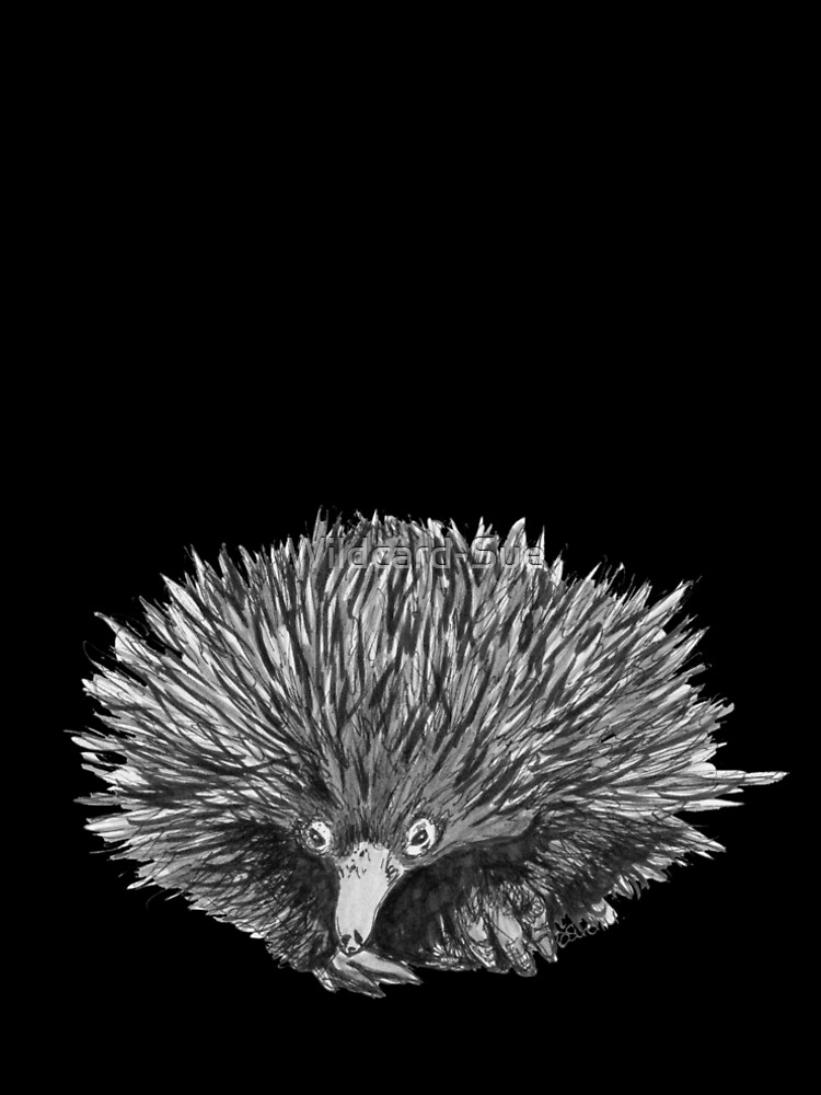 Spike the Echidna by Wildcard-Sue