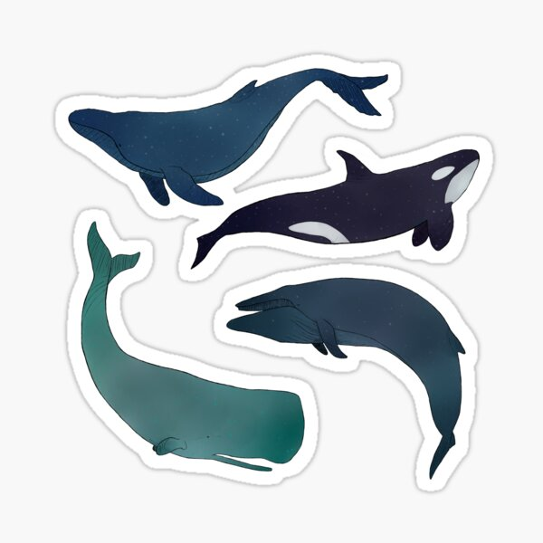 Space Whales Sticker