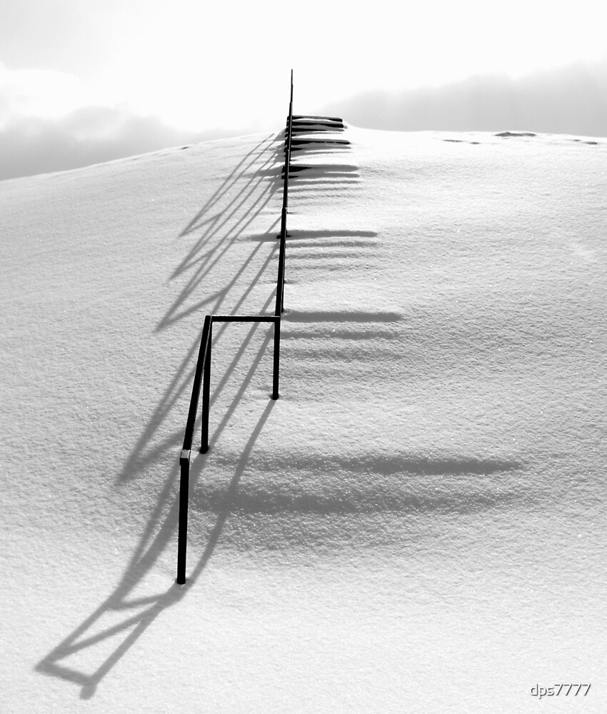 Morning Shadows by David Schroeder