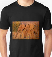 Elephants at the Letaba River, Kruger National Park, South Africa Unisex T-Shirt