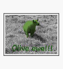 Sheep   Olive ewe!!!   Humour   Humor   Romantic Photographic Print