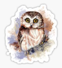 Watercolor Cute Owl Bird Sticker