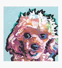 Toy Poodle Dog Bright colorful pop dog art Photographic Print