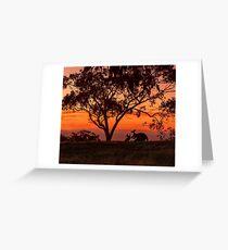 Australiana Greeting Card