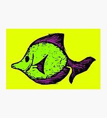 Goofy Fish Photographic Print