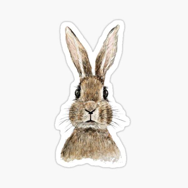 cute innocent rabbit watercolor  Sticker
