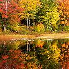 Fall Reflection by Chad Dutson