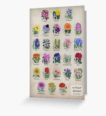 The Floral Alphabet Greeting Card
