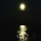 Moonlight on the sea by Robert Steadman