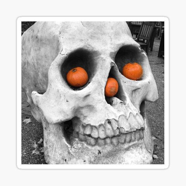 Skull with pumpkins Sticker
