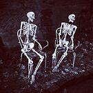 Skeletons by Robert Steadman