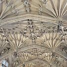 Bodleian Library School of Divinity by Robert Steadman