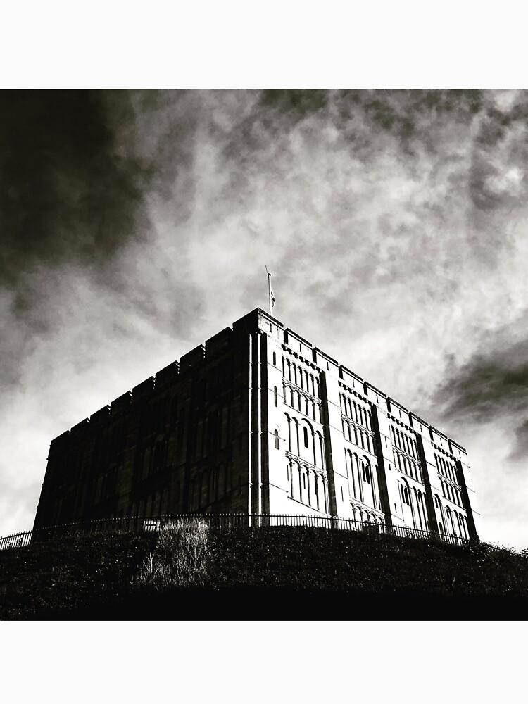 Norwich Castle by robsteadman