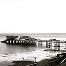 Cromer pier 2 by Robert Steadman