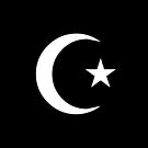 Star and Crescent (WHITE) by Omar Dakhane