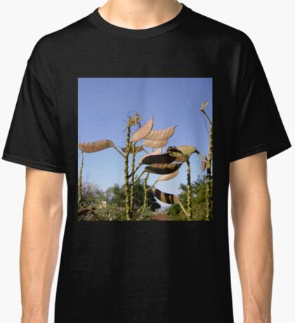 Seed Pods from Bird of Paradise bush Classic T-Shirt