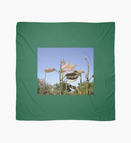 Seed Pods from Bird of Paradise bush Scarf