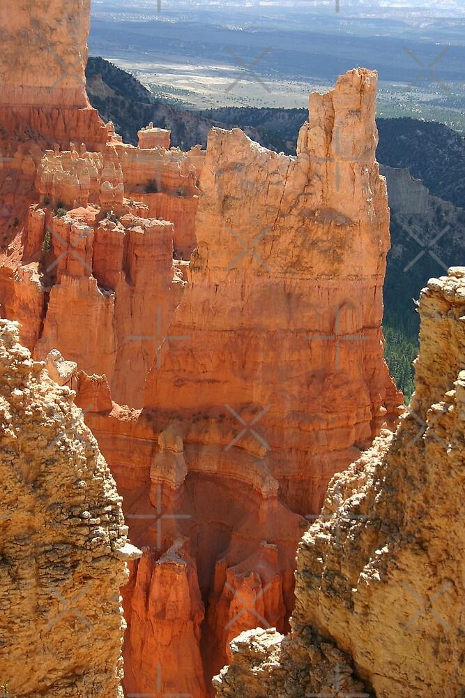 Bryce Canyon by CarolM