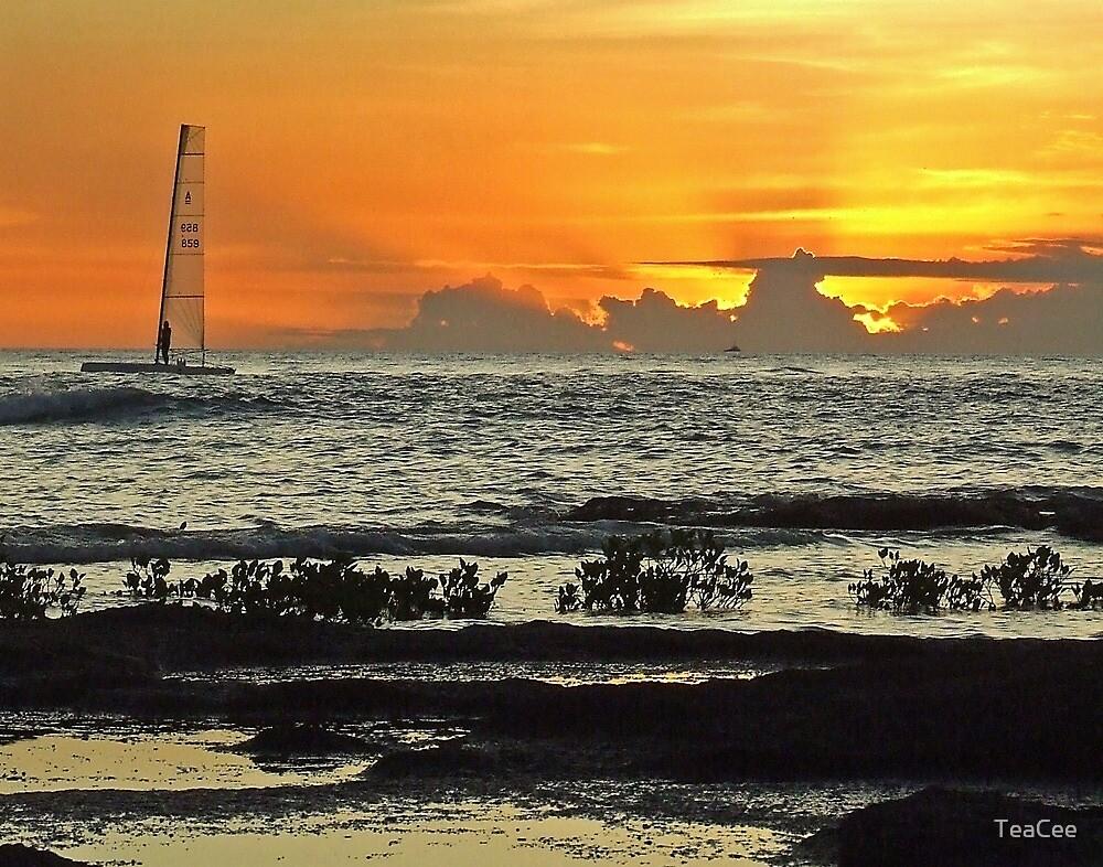Sailboarding at Dusk by TeaCee