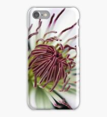Classic White Clematis iPhone Case/Skin