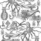 Antique Horrors of the Deep by jenithea