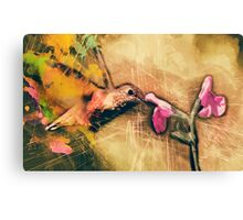 The Hummingbird Canvas Print